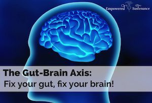 Probiotics Amp The Gut Brain Axis North Island Mood Disorders